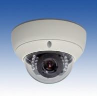 屋外用デイナイトカプセルカメラ(VOC-IR810)